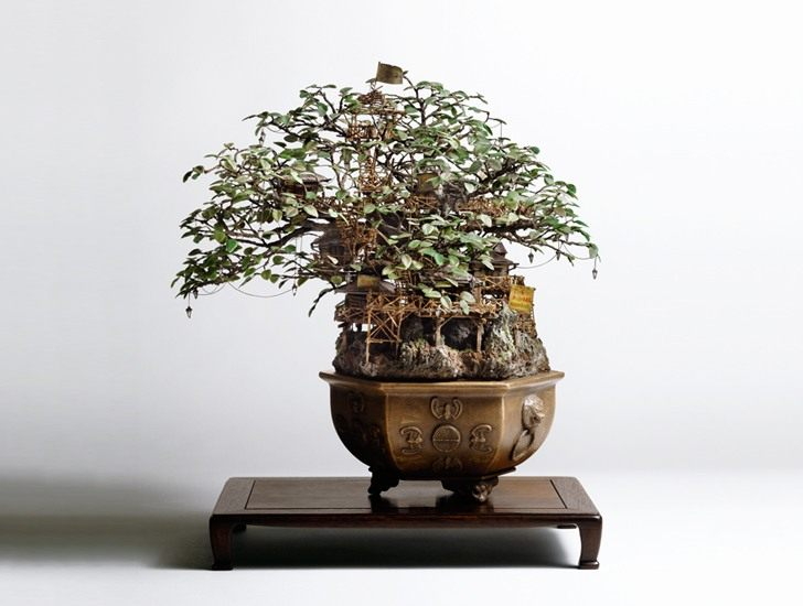 Bonzai-tree-Takanori-Aiba-03