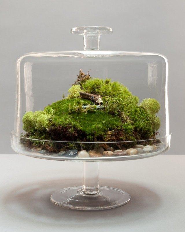 Террариум в ландшафтном стиле