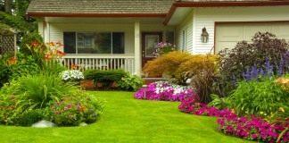 Создание идеального газона
