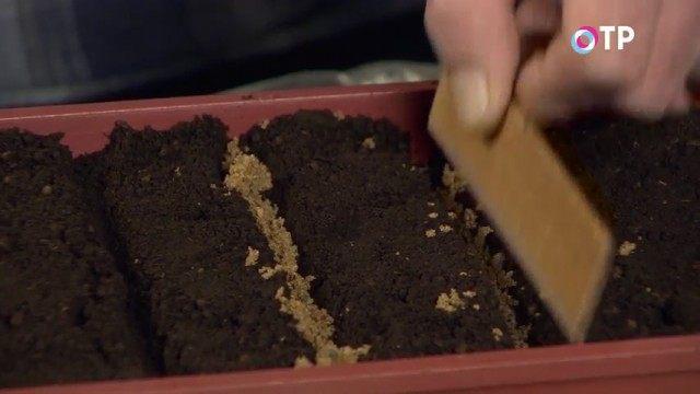 Реечкой уплотняем песочек