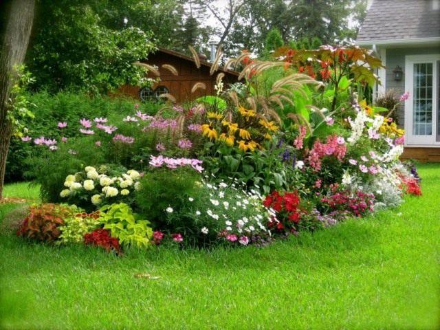 Цветник плотной посадки