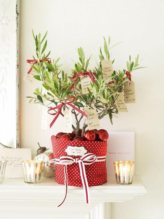 Комнатное растение в новогоднем кашпо