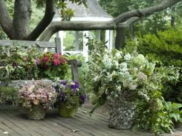 Кадочные композиции в саду французского стиля
