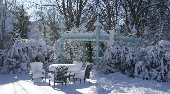 Заснеженный сад в феврале