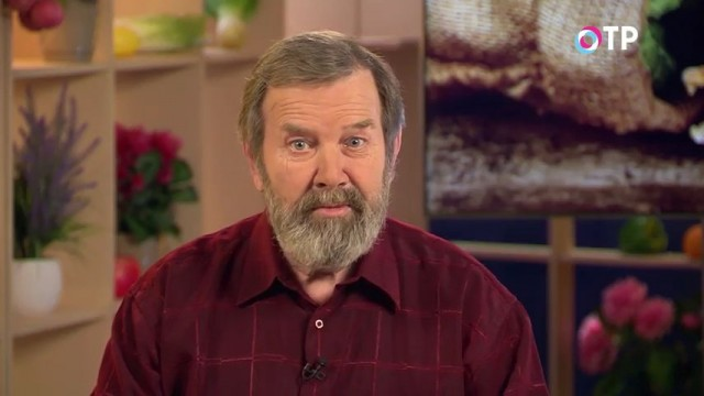 Кандидат сельскохозяйственных наук Николай Петрович Фурсов рассказывает о том, как выбрать семена огурцов для выращивания на дачном участке