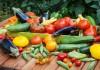 Урожай овощей с грядки