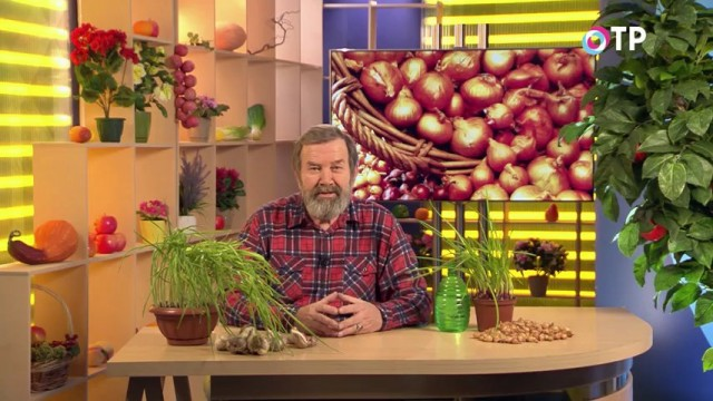 Кандидат сельскохозяйственных наук Николай Петрович Фурсов