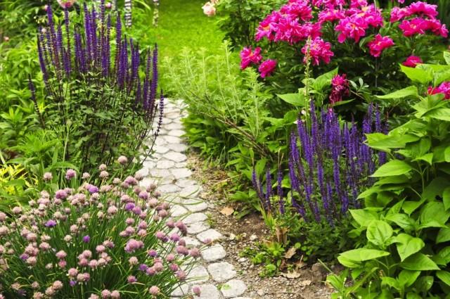 Цветник возле садовой дорожки