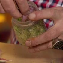 На мох выкладываем смоченный капроновый мешочек с семенами