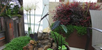 Мини-пруд с фонтаном в вазоне