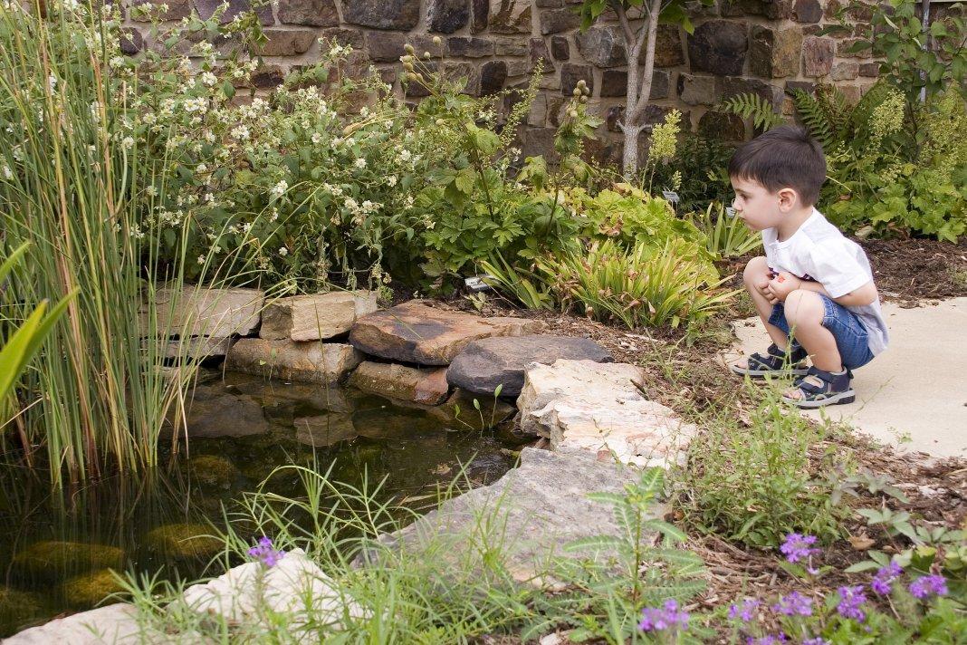 Огородить пруд от детей фото