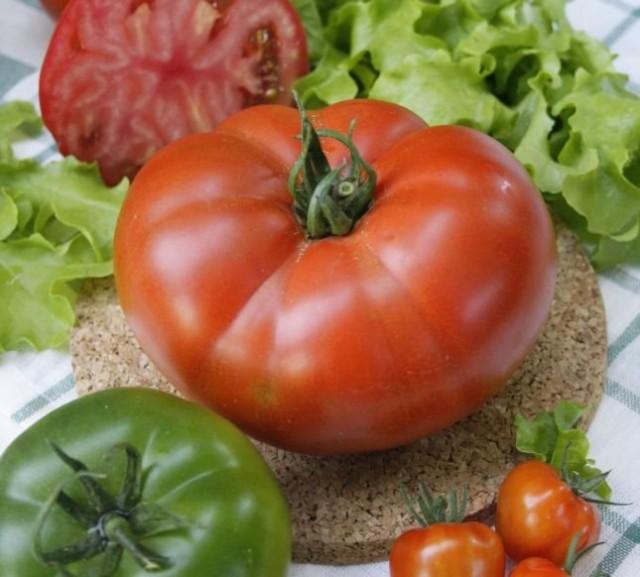Масса плодов томатов из серии «Великие» может достигать 500 г.
