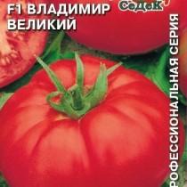 Томат из серии «Великие» от компании СеДеК, гибрид «Владимир Великий» F1