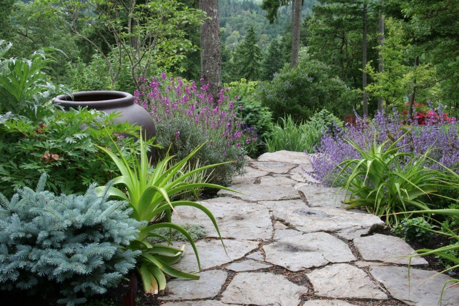 55Ландшафтный дизайн все о растениях