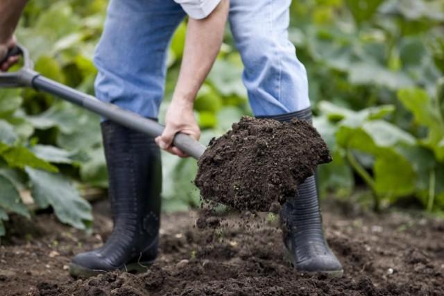 Весенняя подготовка почвы в огороде