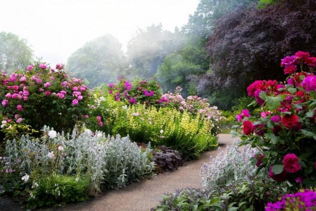 Маскирующий цветник вдоль садовой дорожки