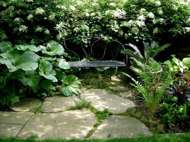Скамейка в тени кустарников и цветник из теневыносливых растений