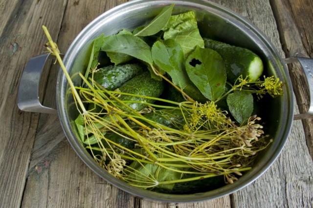 Складываем огурцы и пряные травы в глубокую посуду