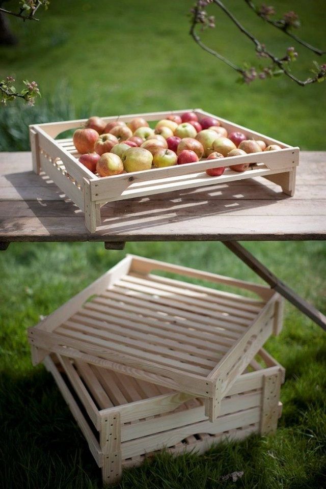Сортировка собранного урожая яблок перед хранением