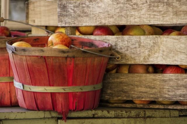 Хранение урожая яблок в деревянных ящиках и корзинах
