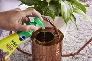 Растворение в воде жидкого удобрения для комнатных растений