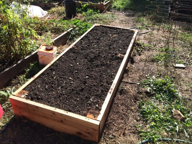 Подготовка грядки для посадки чеснока под зиму