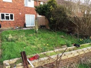 Запущенный участок до очистки от сорняков и нежелательной растительности