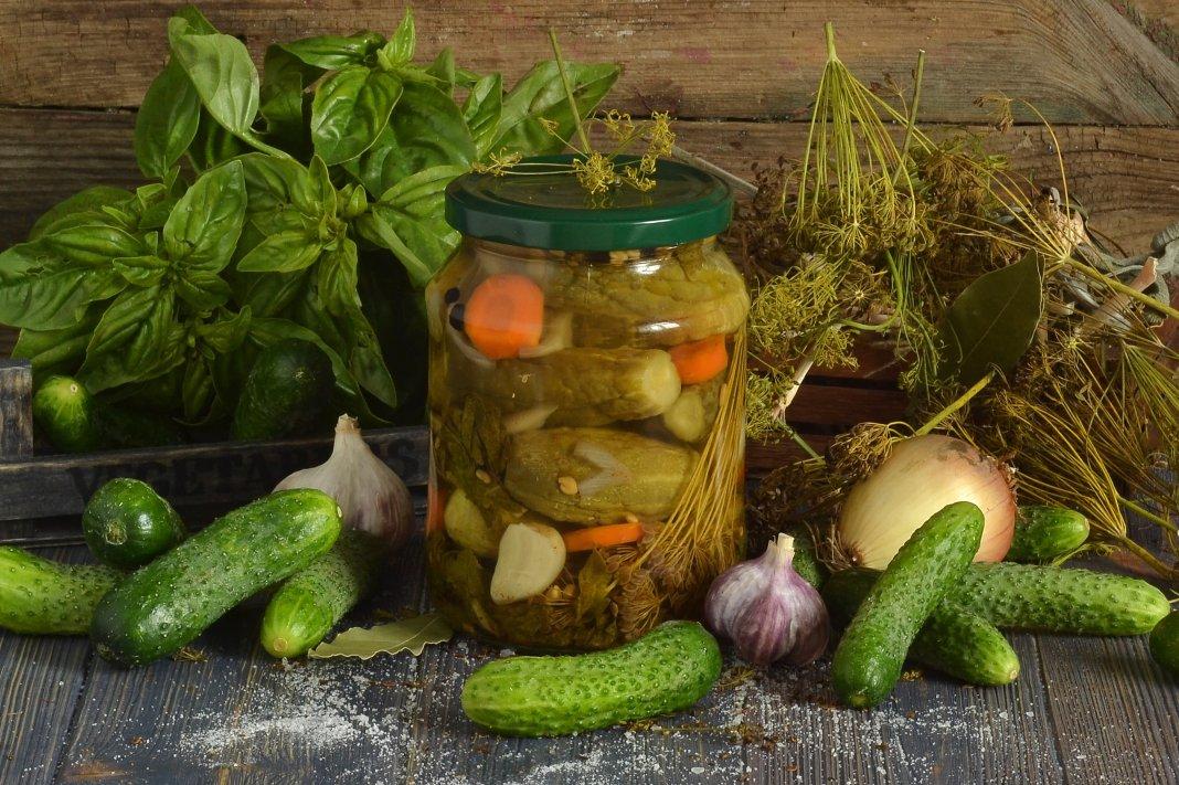 Засолка огурцов на зиму рецепты с фото
