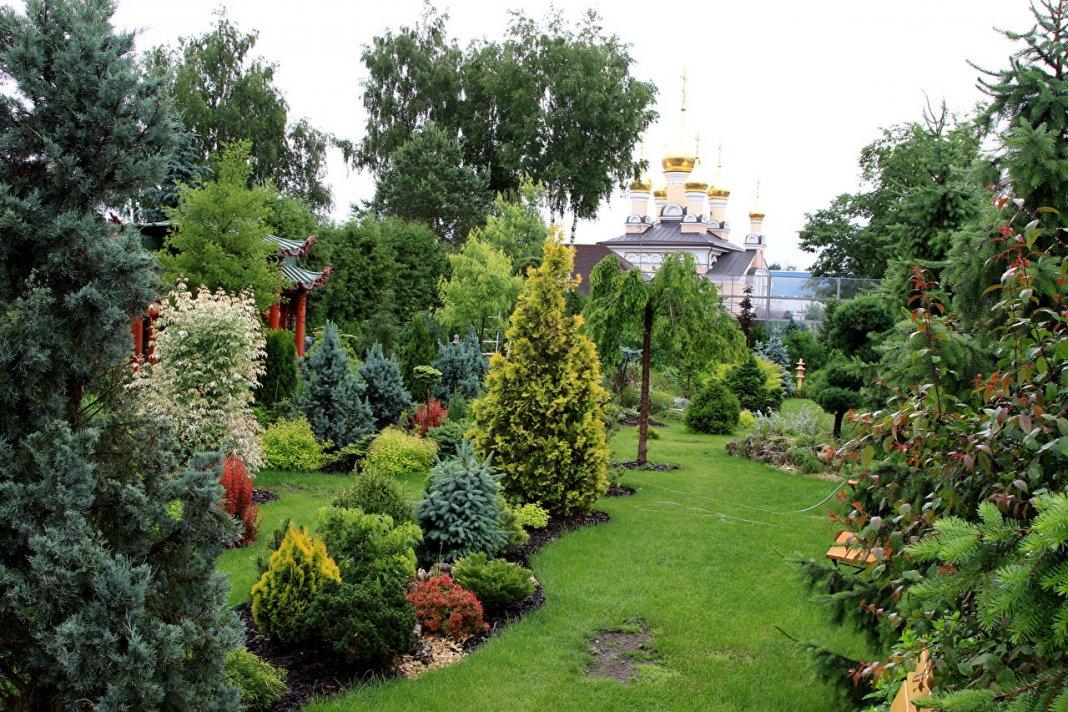 фото оформление сада