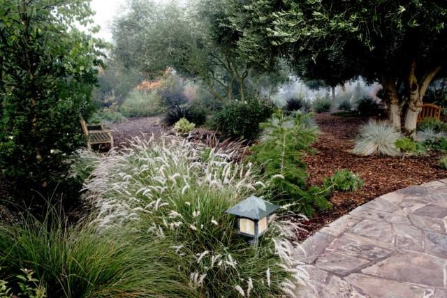 Ландшафтный дизайн с акцентами на деревья, кустарники и хвойные растения
