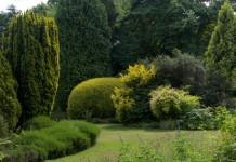 Участок сада с преобладанием в оформлении кустарников и деревьев хвойных и лиственных пород