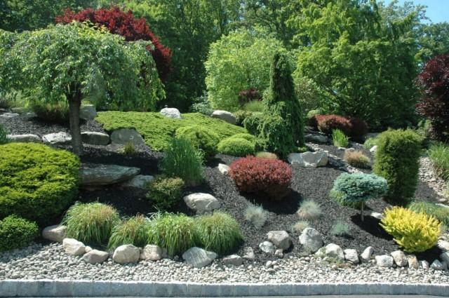 Использование в озеленении участка кустарников и деревьев