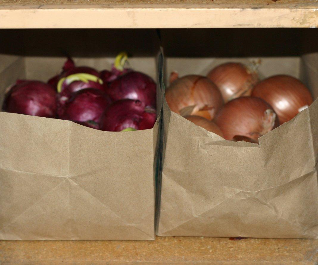 Как подготовить лук к хранению в домашних условиях Сад и огород 92