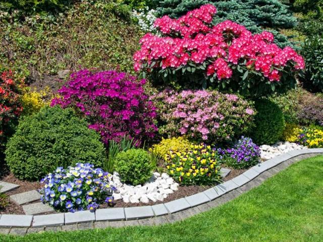 Цветник с акцентами на рододендрон и подобранными растениями-партнёрами