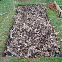 Закладка в тёплую грядку слоя листового опада