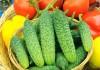 Что такое партенокарпия, гибриды и ГМО