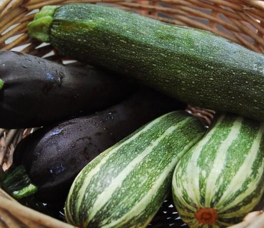 Хранение урожая кабачков в доме