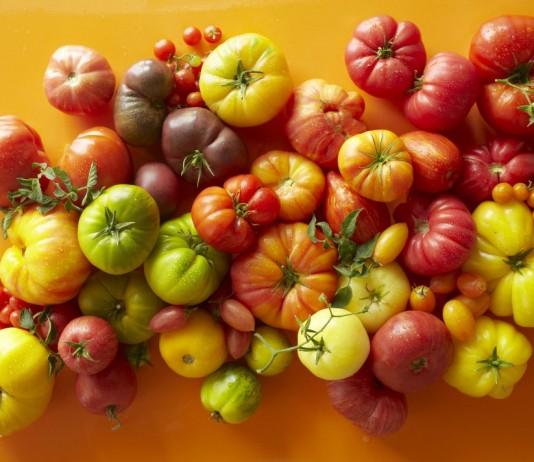 Лучшие новые сорта и гибриды томатов для теплицы и открытого грунта
