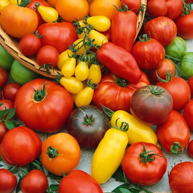 Сорта томатов селекции агрофирмы Аэлита