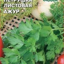 Петрушка листовая Ажур от агрофирмы «СеДеК»