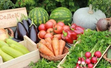 Овощные культуры из серии «Ажур» от агрофирмы «СеДеК»