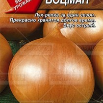 Лук репчатый Боцман