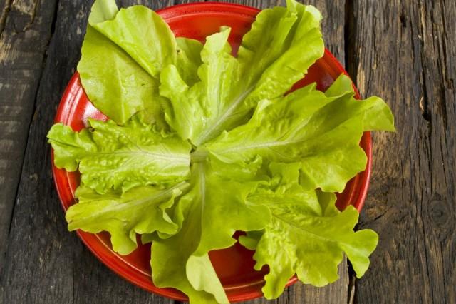 На тарелку кладём листья зелёного салата