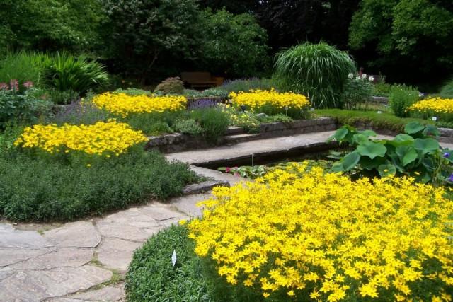 Ритмические приемы в оформлении цветников