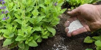 Применение минеральных удобрений