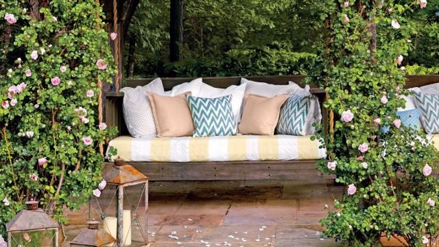 Плетистые розы у зоны отдыха