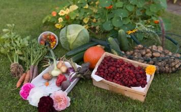 Биологическая защита растений и урожая