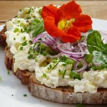 Бутерброд украшенный цветком настурции