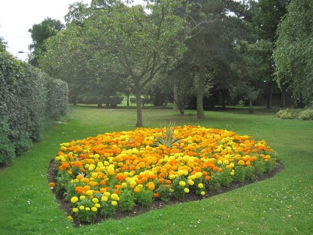 Цветники-«пятна» отлично впишутся в стиль любого сада