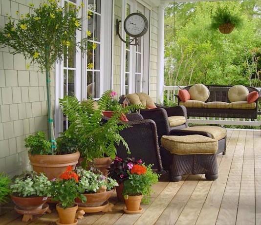 Кадочные растения при флористическом оформлении можно использовать как в единственном экземпляре, так и большими группами